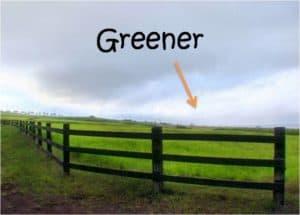 Dead End Job? Try Greener Pastures